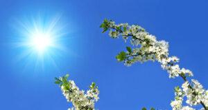 Vejr og klima
